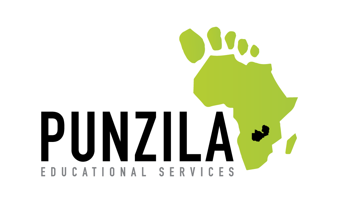 Punzila Educational Services Logo